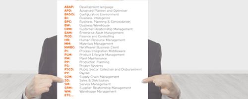 SAP Functional Solutions   Cogent Data Solutions LLC